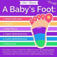 babyreflexology